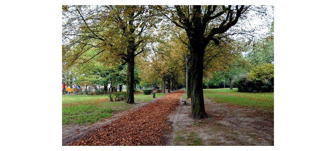 Parc clemenceau parcs et jardins nature mes loisirs for Pyramide tourcoing